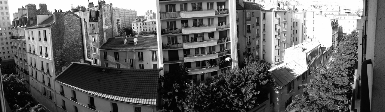 Parisian apartment panoramic view